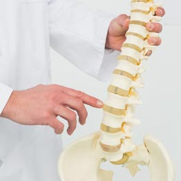 Chiropractic Doctor Near Me